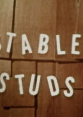 Men at Work - Stable Studs
